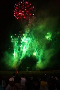 Diwali / Divali / Deepavali Fest