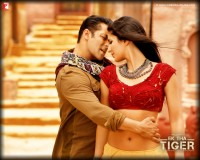 Ek Tha Tiger Wallpaper