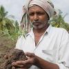 Indien kämpft für eine bessere Lage der Kleinbauer