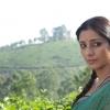 Traumhafte Bollywood Kulissen